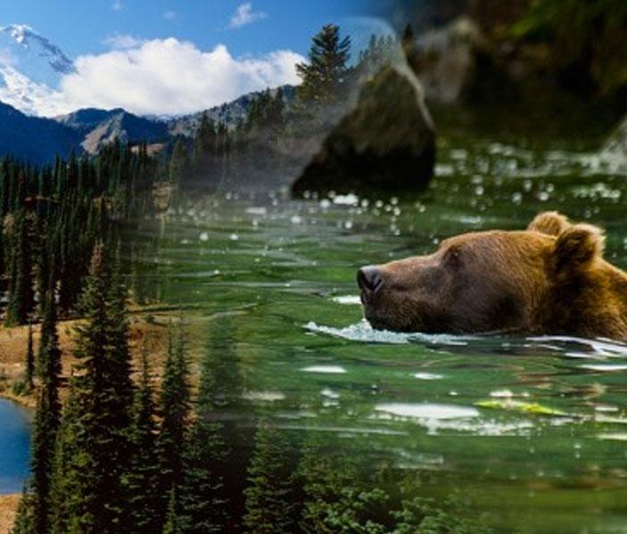 Yukon - geführte Tour